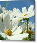 White Daisy Flowers Fine Art Photography Daisies Baslee Troutman Metal Print
