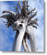 White Desert Tree Metal Print