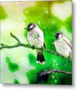 White-eared Bulbul - Watercolor Metal Print