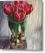 White-edged Red Tulips Metal Print
