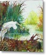 White Egret Swamp Metal Print