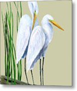 White Egrets And White Lillies Metal Print