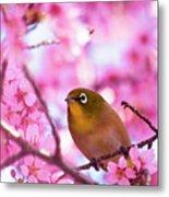 White Eye Bird Metal Print by masahiro Makino