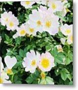 White Flower Metal Print