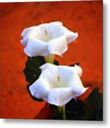 White Flowers Metal Print
