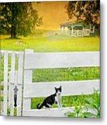 White Gate Cat Metal Print