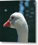 White Goose Sculpted By The Light Metal Print