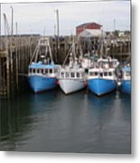 White Head Flotilla Metal Print