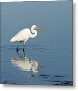 White Heron Reflected Metal Print by Barry Culling