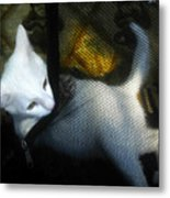 White Kitten Metal Print