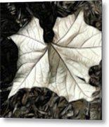 White Leaf On The Ground Metal Print