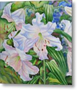 White Lily. 2007 Metal Print