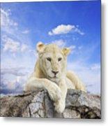 White Lion Metal Print by Anek Suwannaphoom
