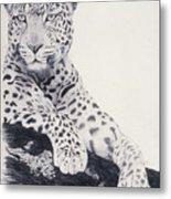 White Loepard Metal Print