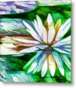 White Lotus In The Pond Metal Print