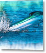 White Marlin -  From The Outer Banks Of North Carolina To Cape M Metal Print