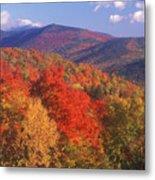 White Mountain Foliage Bear Notch Metal Print