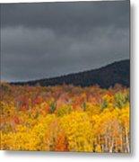 White Mountain Hillside Metal Print