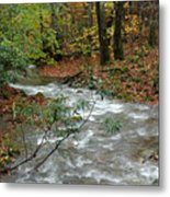 White Oak Run Autumn Metal Print