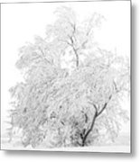White On White Metal Print
