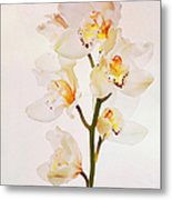 White Orchids Faux Watercolor Metal Print