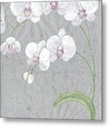 White Orchids On Sprigs  Metal Print