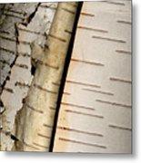 White Paper Birch Tree Bark Metal Print