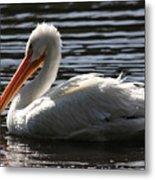 White Pelican . Ripple Waters Metal Print
