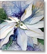 White Poinsettia Metal Print