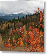 White River National Forest Autumn Panorama Metal Print