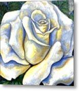 White Rose Two Metal Print