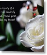 White Rose Expressions Of Love Metal Print