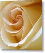 White Rosebud Metal Print
