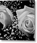 White Roses Bw Fine Art Photography Print Metal Print