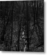White Rriver Headwater Metal Print