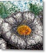 White Saguaro Cactus Blossom Metal Print