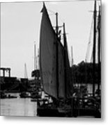 White Sail Metal Print
