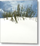 White Sand Green Grass Blue Sky Metal Print
