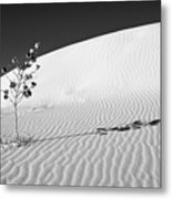 White Sands 4 Metal Print