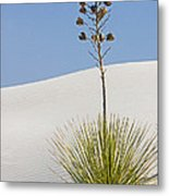 White Sands National Monument, Nm Metal Print