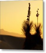 White Sands Sunset Metal Print
