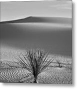 White Sands Yucca Metal Print