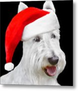 White Scottish Terrier Dog Christmas Card Metal Print
