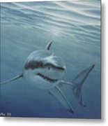 White Shark Metal Print