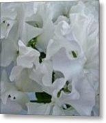 White Sweetpeas Metal Print