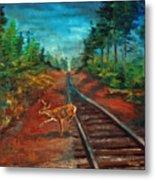 White Tail Deer In Southern Woods Metal Print