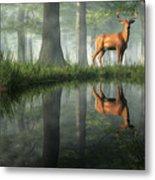 White Tailed Deer Reflected Metal Print