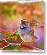 White Throated Sparrow - Digital Paint 3 Metal Print