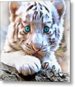 White Tiger Cub Metal Print