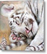 White Tiger Dreams Metal Print by Carol Cavalaris